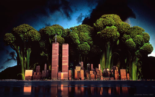 James_Porto_Broccoli2_NYC